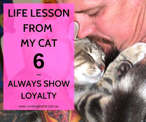 Life Lesson from my Cat number 6 - always show loyalty and integrity in your friendships because it defines you. #inspiration #lifelesson