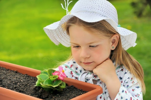 How to teach your kids to garden