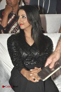 Happy Birthday Telugu Movie Audio Launch  0011