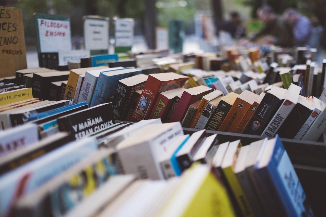 Destralhe de livros - 1 ano de destralhe