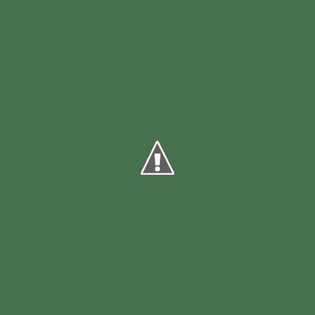 Tarul stie cand vaca e in calduri, dupa miros! Da, tu Ioane, ai nasul infundat?
