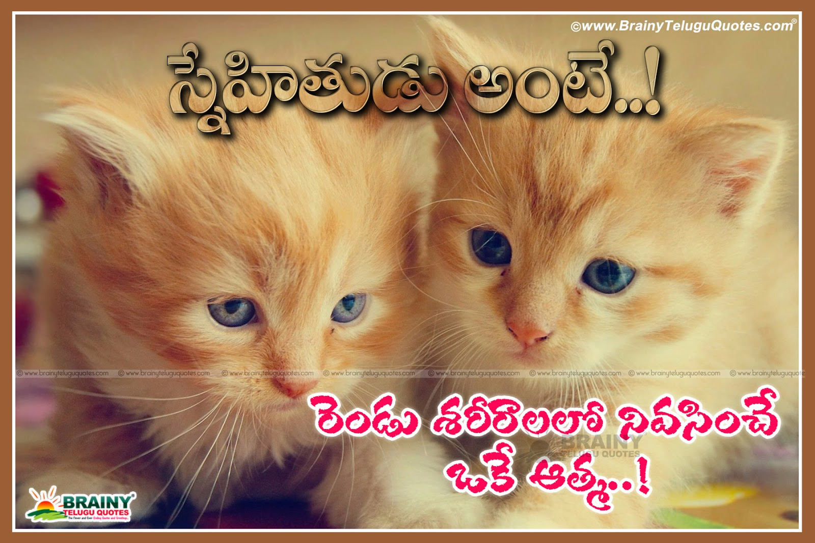 Friendship meaning Messages and Quotations in Telugu