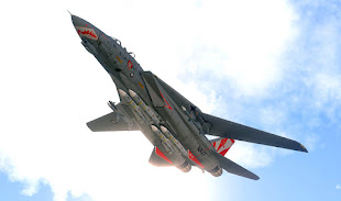 Arma3用F-14D TomcatアドオンのVF-111