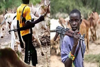 "Benue Attacks: ""Withdraw Anti-Open Grazing Law"" – Fulani Group Gives Condition For Peace 1"