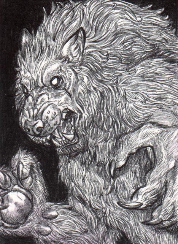 Punte di lupo mannaro