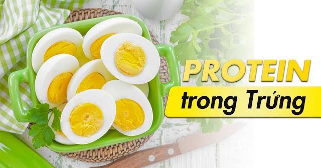 1 qua trung chua bao nhieu protein
