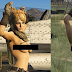 Topless Military Girl GTA5