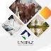 UNIPAZ entre los mejores grupos de Investigación a nivel Nacional.