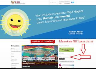 Beranda Web Site BKN