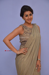 Nikki Galrani in Saree 113.JPG