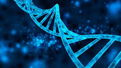 Modifican ADN en bebés para que no padezca VIH-TuParadaDigital