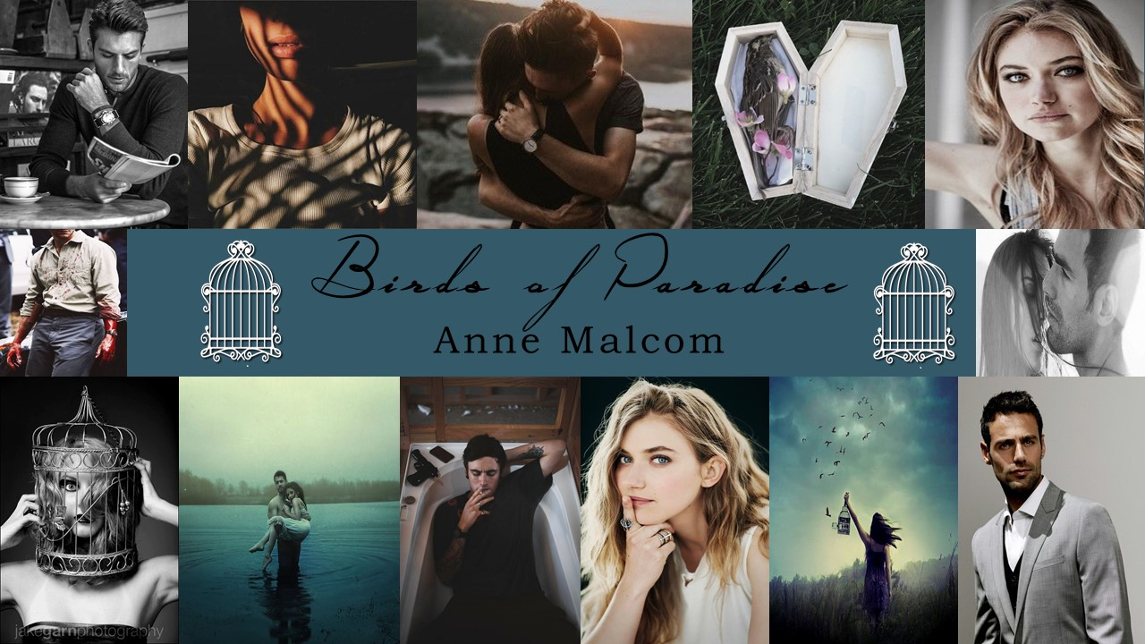 ARC Review - Birds of Paradise by Anne Malcom