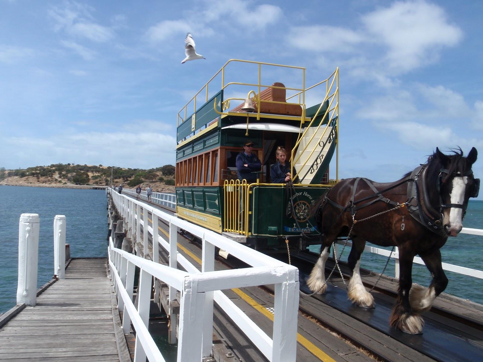 Travelling Around Australia In A Lemon Fleurieu Peninsula