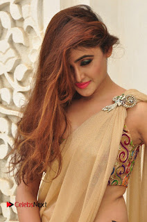 Actress Sony Charishta Pictures in Saree at Aura Fashion Exhibition Launch  0095