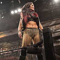 Ivelisse On Interest With Impact Wrestling, Not Working WWE Mae Young Classic, Steve Austin, More