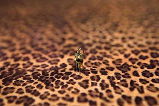 fondo de leopardo