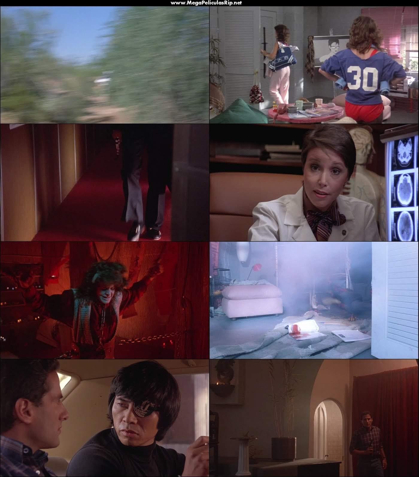 Ninja 3 La Dominacion 1080p Latino
