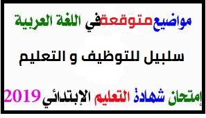 مواضيع اختبارات متوقعة في اللغة العربية لشهادة التعليم الابتدائي 2019 PDF