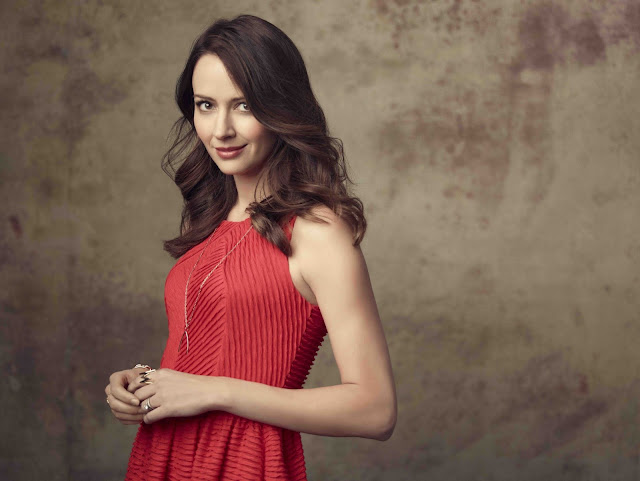 55 Amy Acker HD Wallpaper