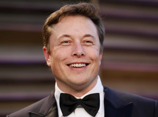 Elon Musk (Biography)