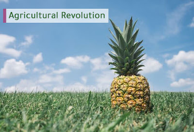 Agricultural Revolution ency wiki encywiki 2019