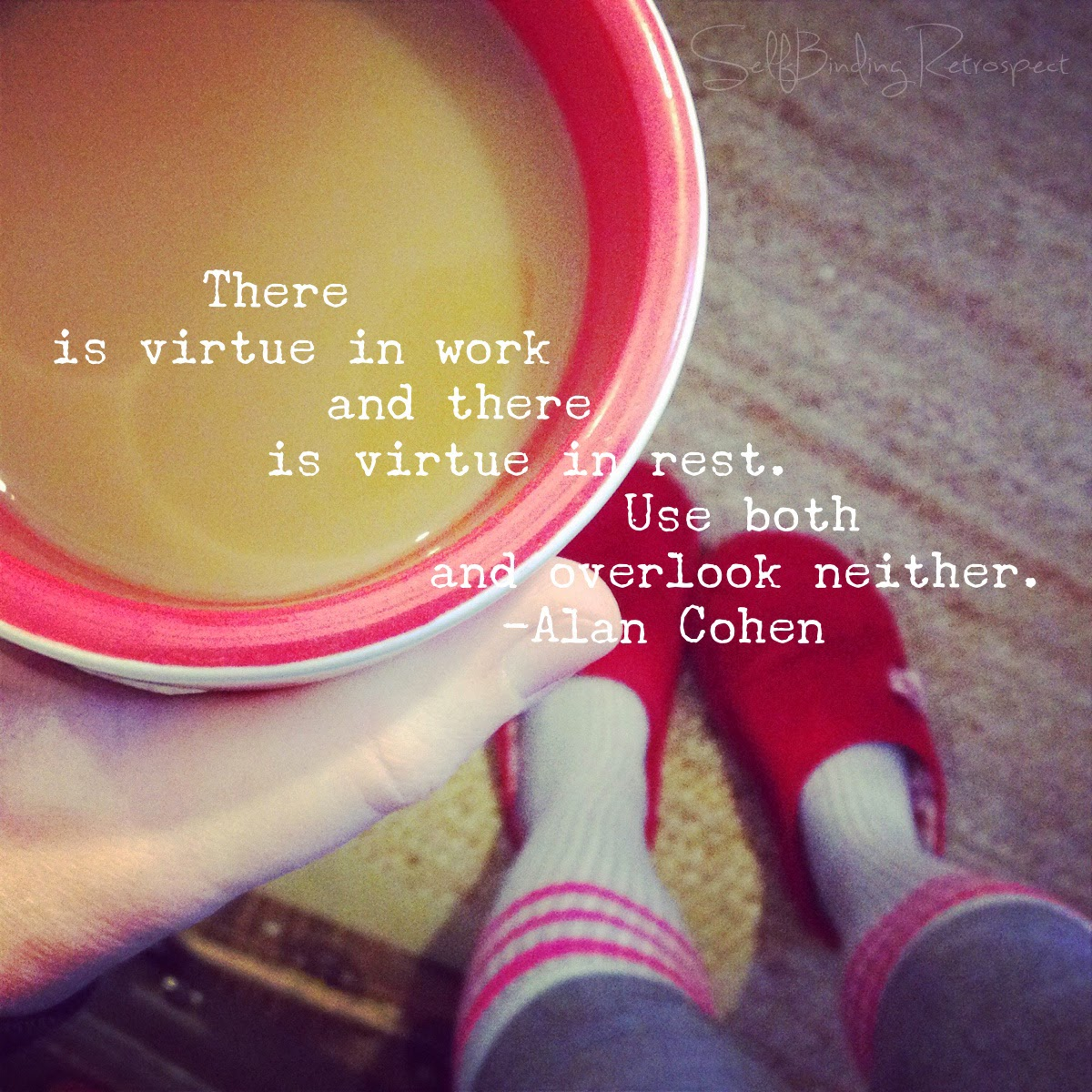 """There is virtue in work and there is virtue in rest. Use both overlook neither."" Alan Cohen quote"