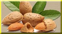 gambar buah badam,almond