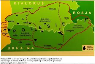 Mapa Polesia w Muzeum PPN