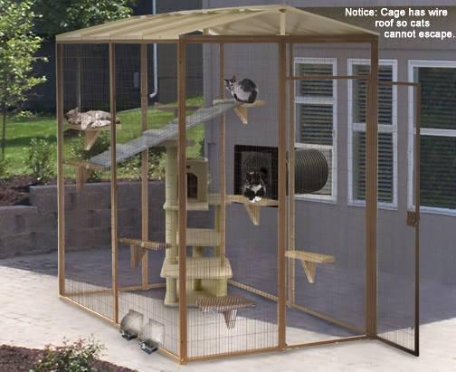 Minimalis Id 92 Desain Kandang Kucing Tingkat Dari Kayu Besi Dan Alumunium