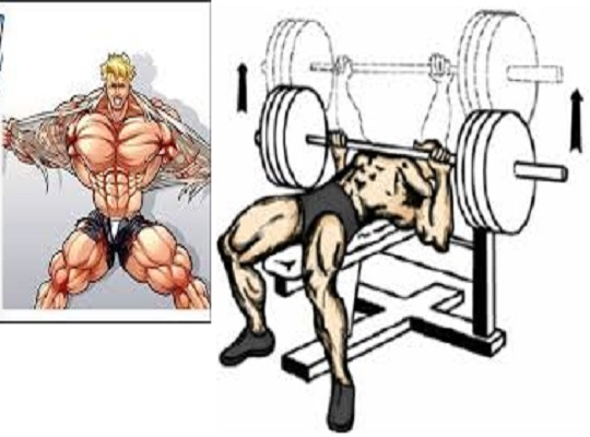 6 Top Technique Points To Increase Bench Press Weight