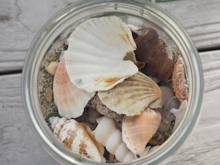 muscheln-sand-steine-glas
