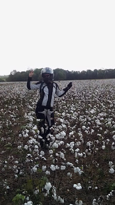 Skipper poses in the middle of a cotton field, wearing full motorcycle gear