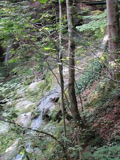"""Der """"große"""" Wasserfall im Schießbachtobel"""