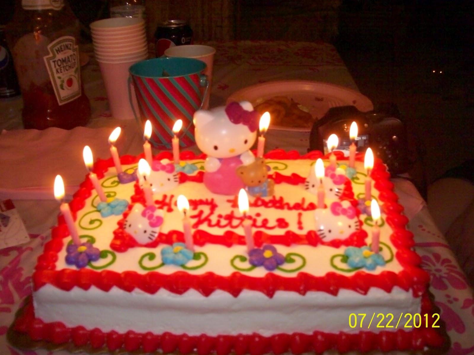 Fur Everywhere Kitty Birthday Celebration