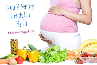 Keperluan nutrisi lengkap untuk ibu hamil dalam set hamil shaklee
