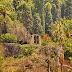 a janela de Colombo na Quinta Palmeira