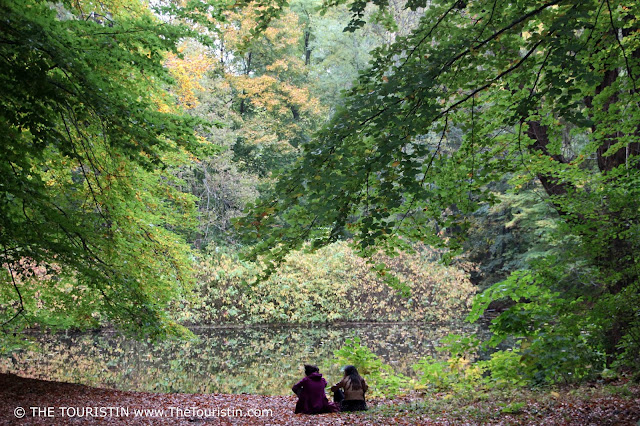 Two women sitting next to each other on fallen leaves at a lake's shore in Tiergarten; autumn foliage reflected in the lake.