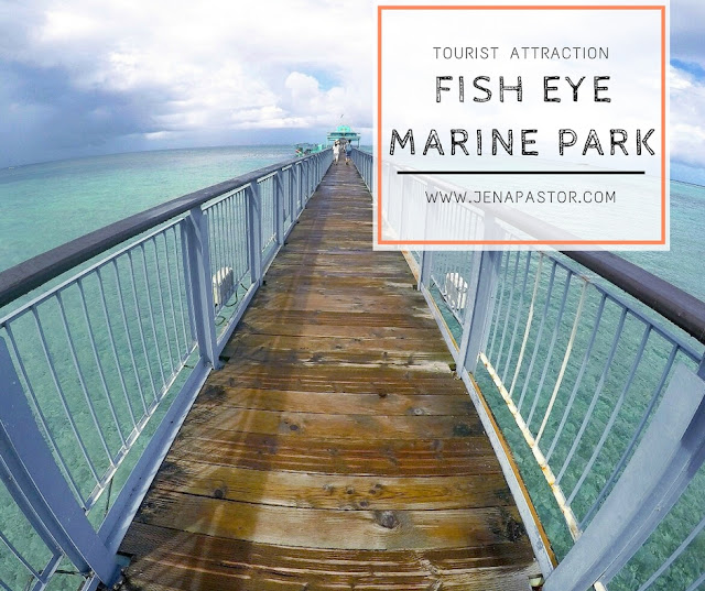 boardwalk to fish eye marine park tourist attraction