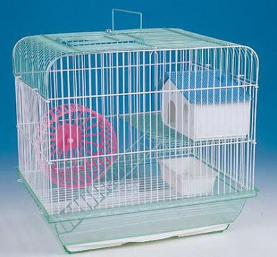 Hamster-Kafesinde-Olması-Gerekenler