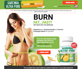 The Garcinia Cambogia Select Weight Loss Program