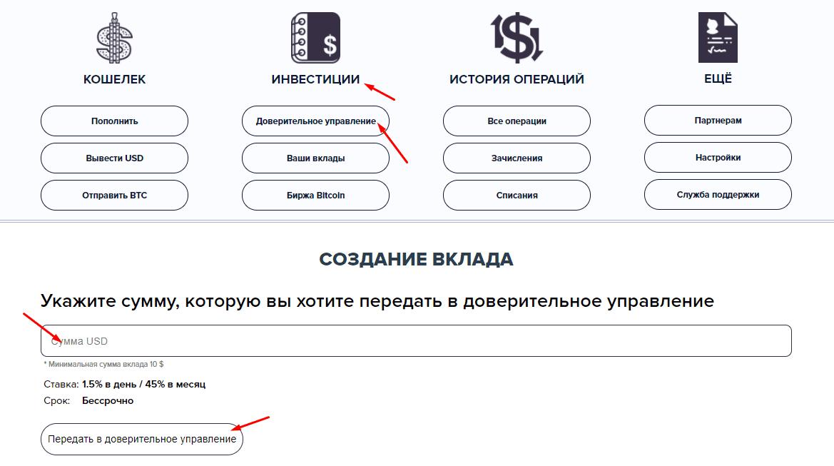 Регистрация в Bitwallio 3