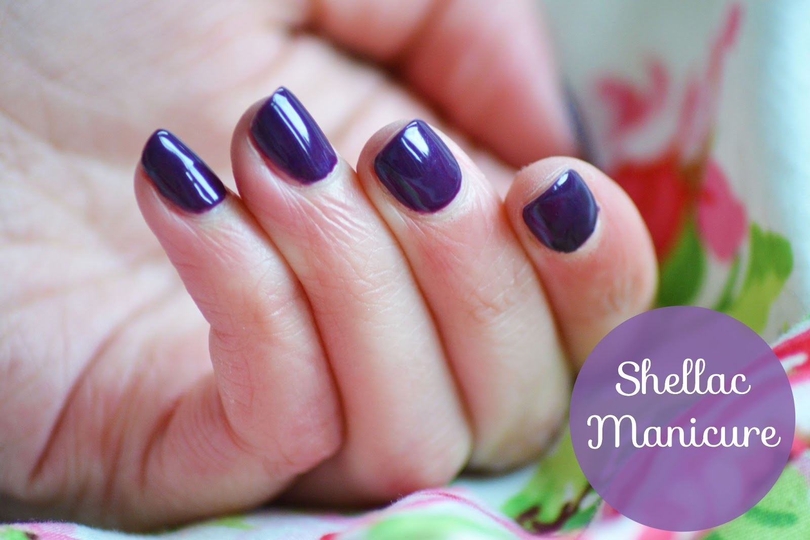 Shellac Nails Zen Lifestyle