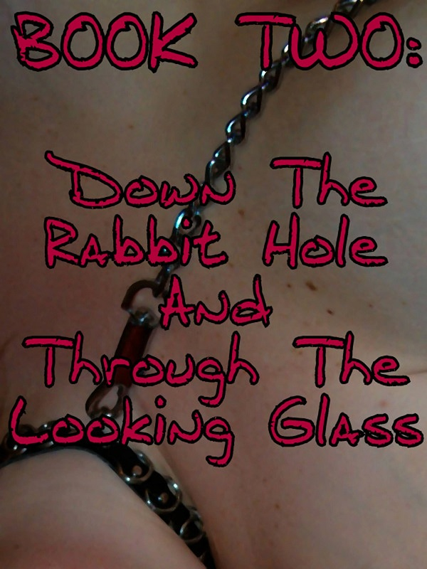Down the Rabbit Hole... Book Trailer