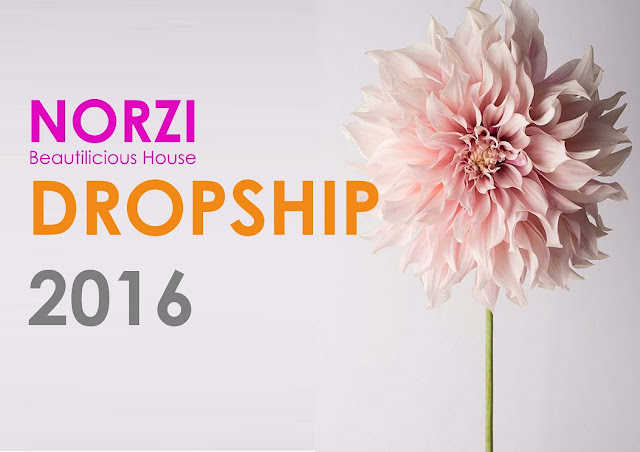 Norzi beautilicious house tip menjadi agen dropship for Drop shipping jewelry business