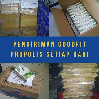 Bisnis propolis