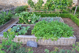 Easy Ways to Cultivate Your Vegetable Garden