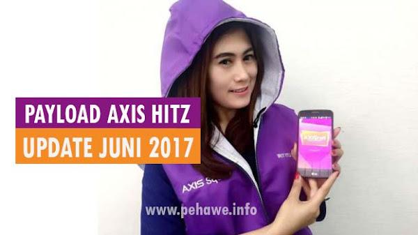 Payload Axis Hitz Work Terbaru Juni 2017