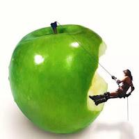 Câu chuyện cây táo, ba người đàn ông và cách làm giàu