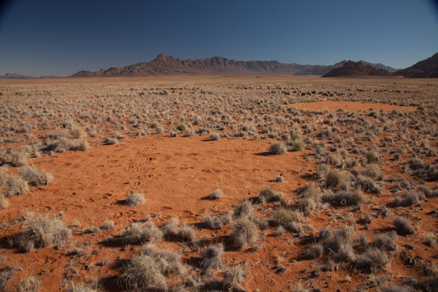 New theory on Fairy Circles of Namibia