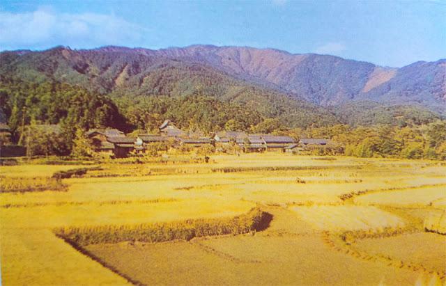 Sebagian besar wilayah daratannya berada di empat pulau utama Fisiografi Negara Jepang